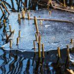 Vedenkorkeudet nousussa Hämeessä
