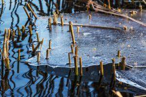 Vesi, jää