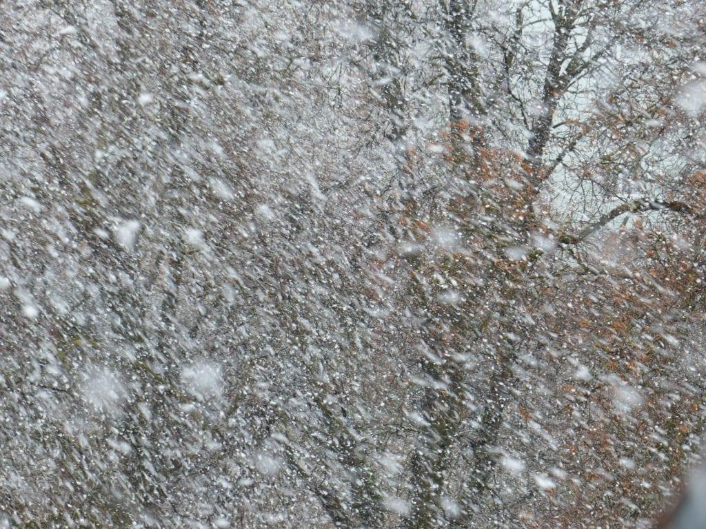 Lumimyrsky, lumisade, lumi